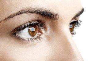 eyebrow and lash tint